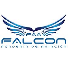 falcon logotipo